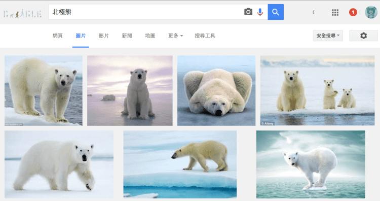 gogole image search - 北極熊