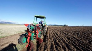 Three-time national ploughing champion and Cape Otway resident Shayne Neal will be at Bungador this weekend with ploughers from across Victoria competing for a spot in next month's National Championship at Warncoort.