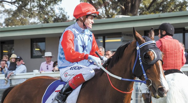 Admiral's Joker aims for ticket to All Star Mile