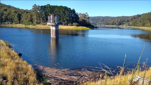 RISING: West Barwon Reservoir, south of Forrest, rose by 11.5 per cent last week after a record-breaking downpour.