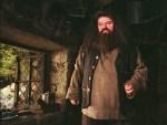 'Hagrid' de Harry Potter no puede caminar por esta enfermedad