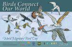 Conmemora Gobierno de Los Cabos el Día Mundial de las Aves Migratorias 2020
