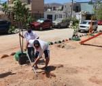 Sociedad y Gobierno de Los Cabos trabajan juntos en la recuperación de áreas verdes