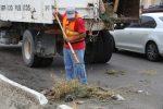 En Los Cabos, Servicios Públicos ha retirado más de 12 mil toneladas de ramas y cacharros en lo que va del año