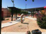 Parques limpios y seguros en Los Cabos; trabajo de Servicios Públicos