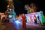 Alcaldesa Armida Castro y equipo de la XIII Administración inician fiestas decembrinas con Encendido del Árbol Navideño en San José del Cabo