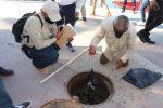 Busca Gobierno de Los Cabos una solución definitiva a los derrames de aguas residuales en la marina de CSL