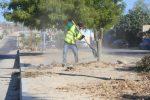 Constante el mantenimiento de camellones en Los Cabos; se han rehabilitado más de 36 km