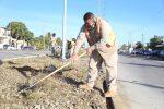 Servicios Públicos inició la rehabilitación y reforestación del Camellón en la avenida Forjadores de SJC