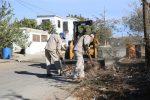 Para prevenir enfermedades, el Gobierno de Los Cabos continúa con el retiro de ramas y cacharros