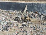 Una adecuada disposición final de la basura, ayuda a preservar la flora y la fauna en el municipio