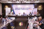 SALDO BLANCO EN BCS, TRAS EL PASO DE HURACÁN OLAF: CONSEJO ESTATAL DE PROTECCIÓN CIVIL