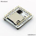 Microduino-SD-T.jpg