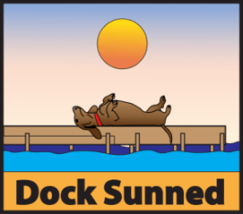 dachshund laying on a dock
