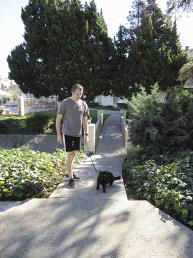 Just some guy walking his cat :)