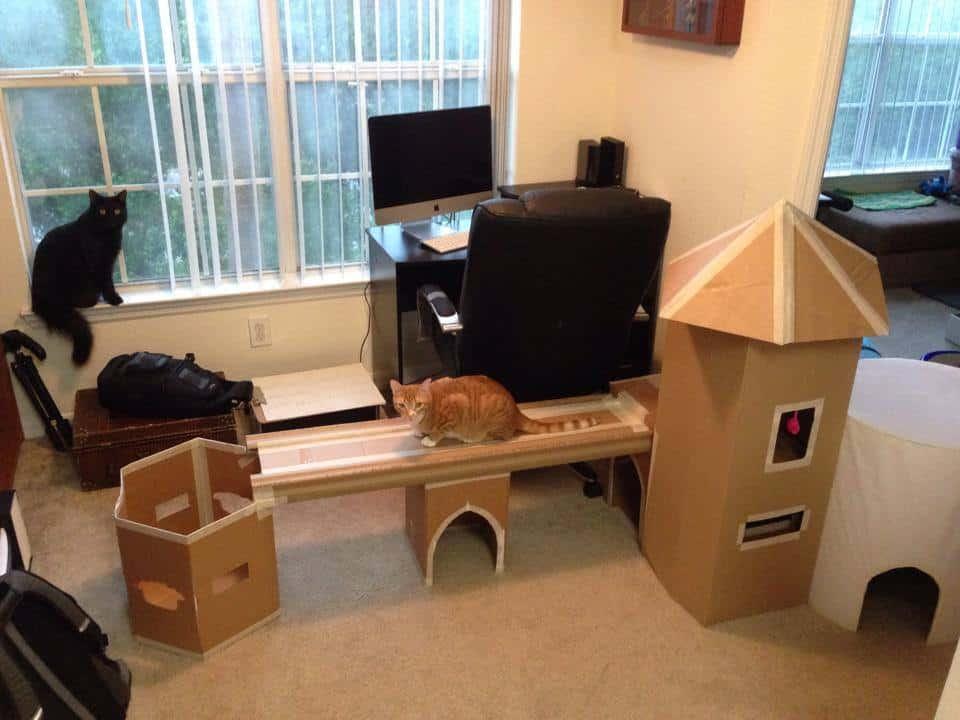 epic cat castle cole