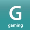 gaming tag