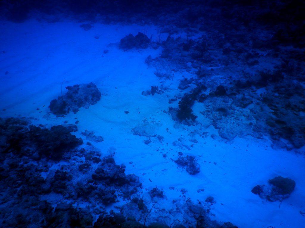 Meseta en Blue Corner