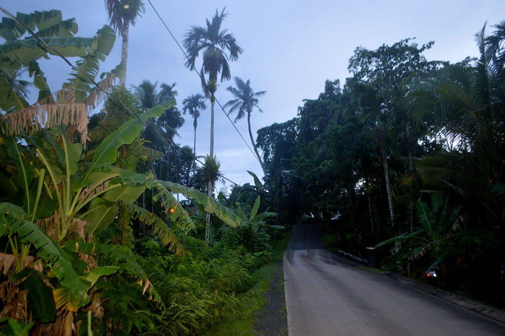 Calle secundaria en Koror
