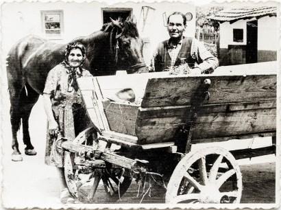 Ion Maria și Ion Scarlat lîngă o căruță Costică Acsinte din casele noastre Arhiva personală Ion Mariana, Perieți