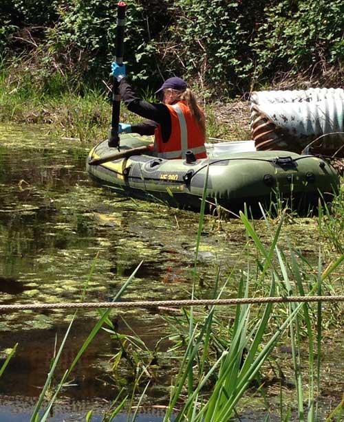 Investigating pond for contamination