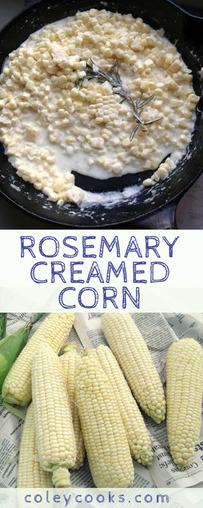 ROSEMARY CREAMED CORN | Easy creamed corn recipe! Fresh corn on the cob simmered in a simple rosemary cream sauce. A delicious summer side! #easy #summer #corn #side #recipe #southern | ColeyCooks.com