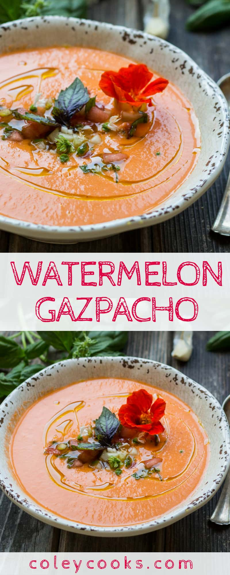 WATERMELON GAZPACHO| Easy vegan gazpacho recipe! Silky smooth, perfectly balanced, insanely delicious on a hot summer day! #summer #soup #watermelon #gazpacho #vegan #plantbased #recipe | ColeyCooks.com