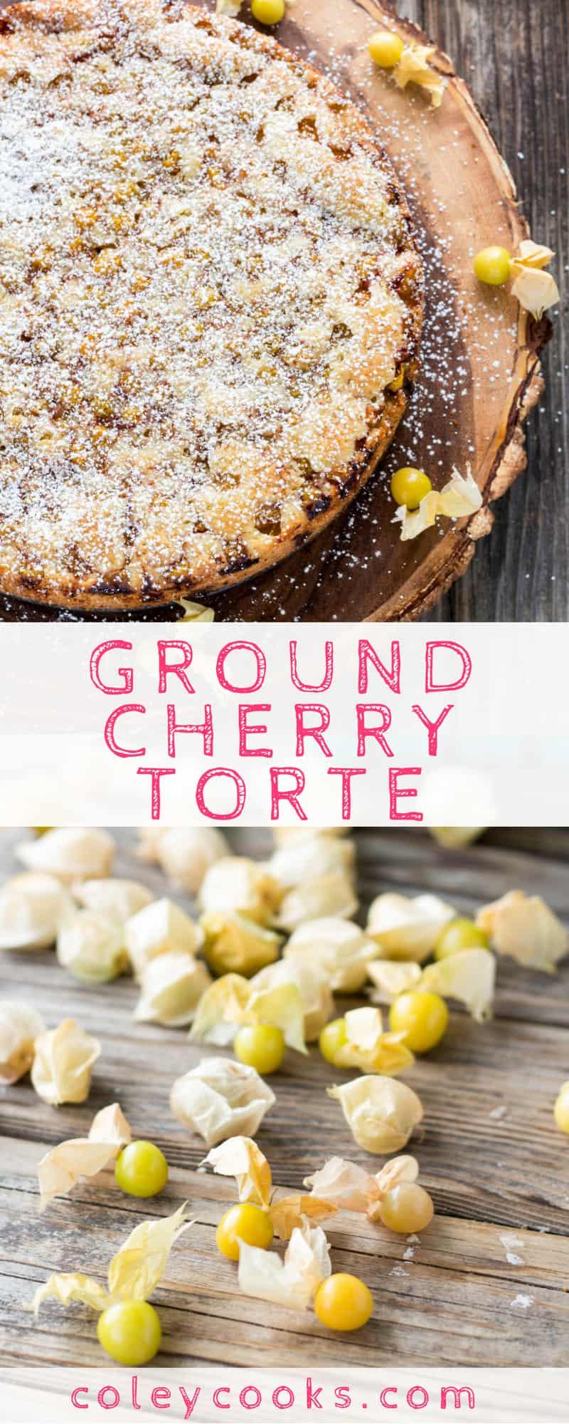 Ground Cherry Torte Coley Cooks