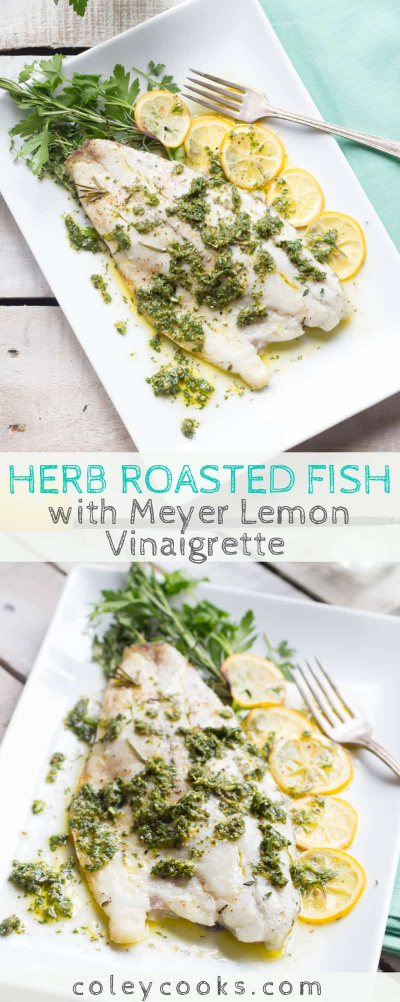 This easy recipe for Herb Roasted Fish with Meyer Lemon Vinaigrette is an easy, healthy recipe that can be made in 20 minutes! Adaptable to many different types of fish. #easy #fish #seafood #recipe #barramundi #meyerlemon #roasted | ColeyCooks.com