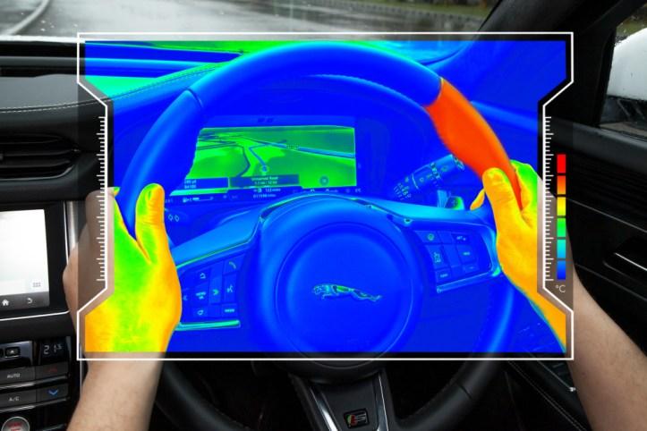 Jaguar sensory steering