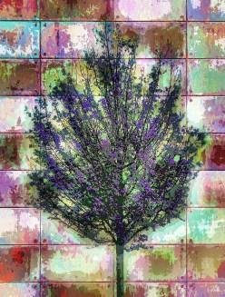 plumb-tree