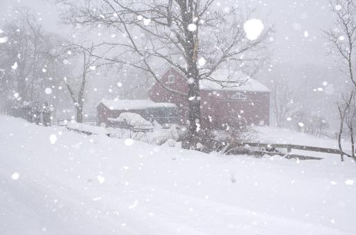Fall Of Quotations Wallpapers Winter Storm Pax Hits Connecticut Photographs Colin