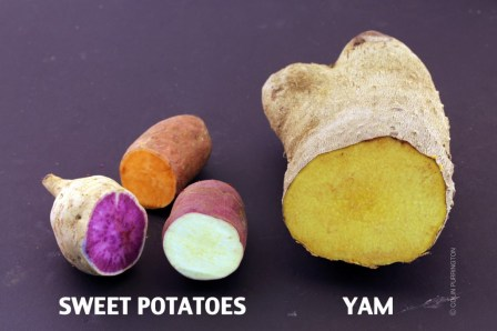 Photograph of cut Okinawan purple sweet potato, Beauregard sweet potato, oriental sweet potato, and a yellow yam.