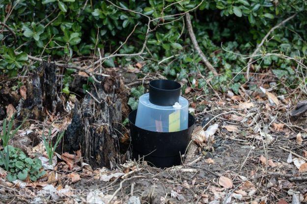 Biogents gravid Aedes trap