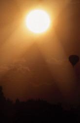 Sunlight generates free radicals that damage the skin