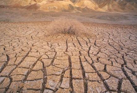 Dry Cracked Skin