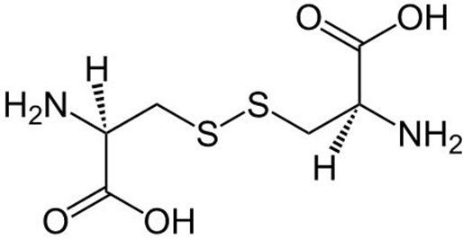 calcul de cystine
