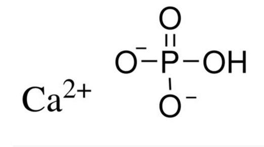 cristaux de phosphate de calcium