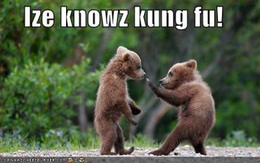 El Oso del Kung-Fu