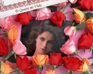 Collages con Rosas Rojas.