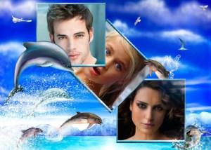 Collages online con Delfines.