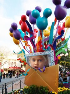 Collage Disneyland.