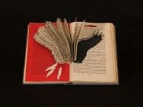 book_300