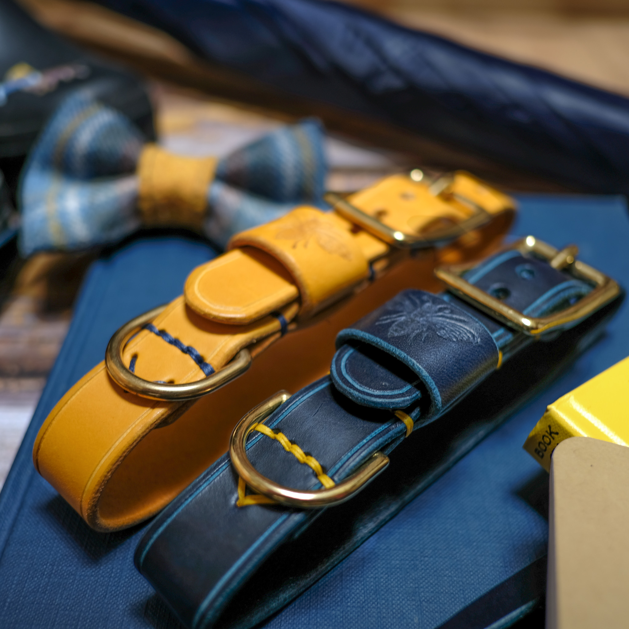 Leather Leads and Collars
