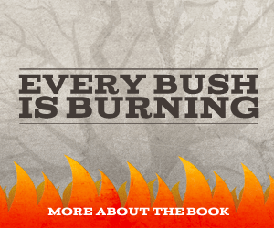 Every Bush Is Burning by Brandon Clements