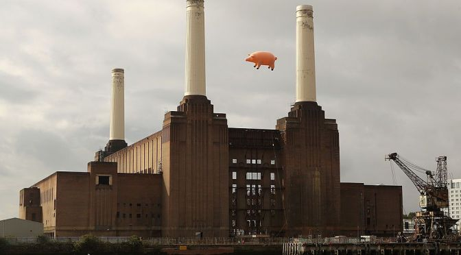 Flying Pig Recreates Pink Floyd Album Cover