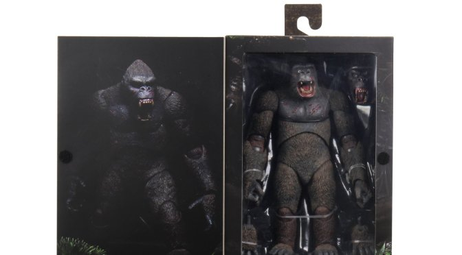 ICYM NECA's Latest Announcements