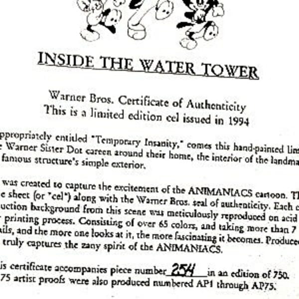 Animaniacs Inside Water Tower Cel Certificate of Authenticity close up