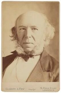 NPG P513 Herbert Spencer  Portrait  National Portrait
