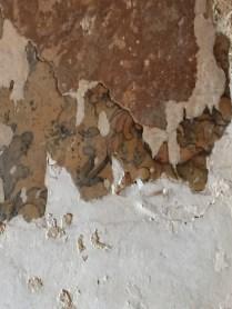 hidden flower wallpaper
